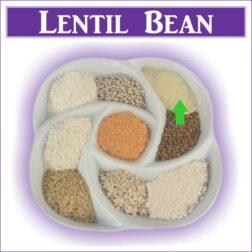 Gluten Free Lentil Bean Flour